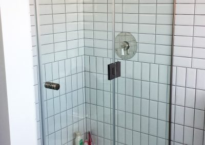 Shower door and side panel